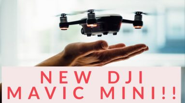 NEW Mavic Mini Details Released! The rumors were WRONG!!!