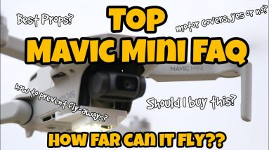 Top Mavic Mini Frequently Asked Questions